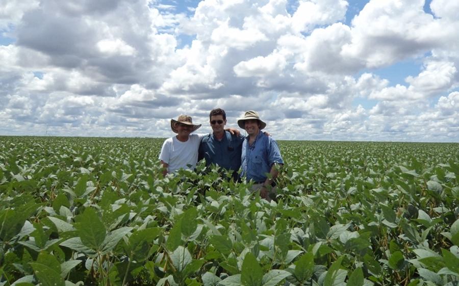 Quedaron más de U$S 2500 millones sin vender de la cosecha anterior ...
