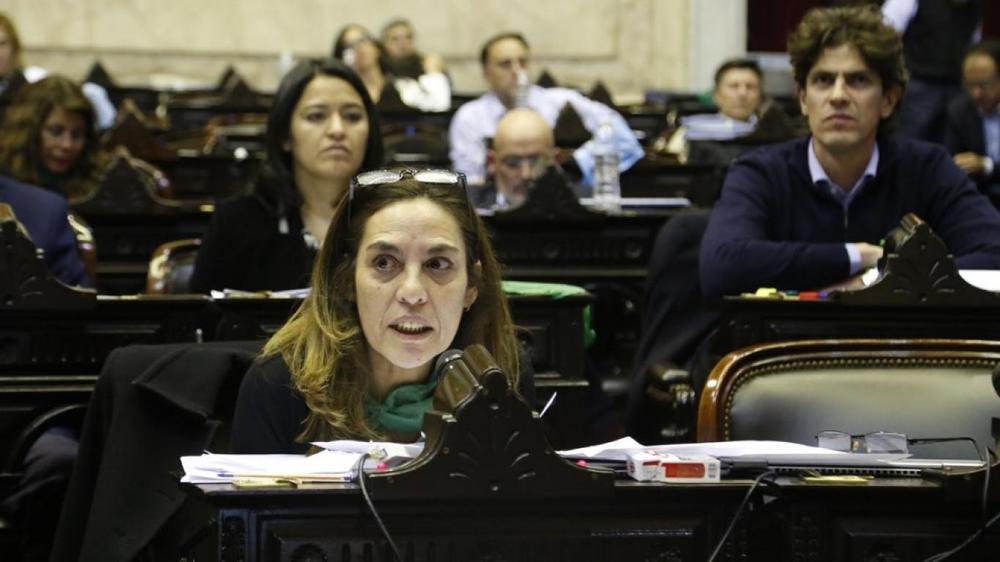 Carla Carrizo Diputada UCR