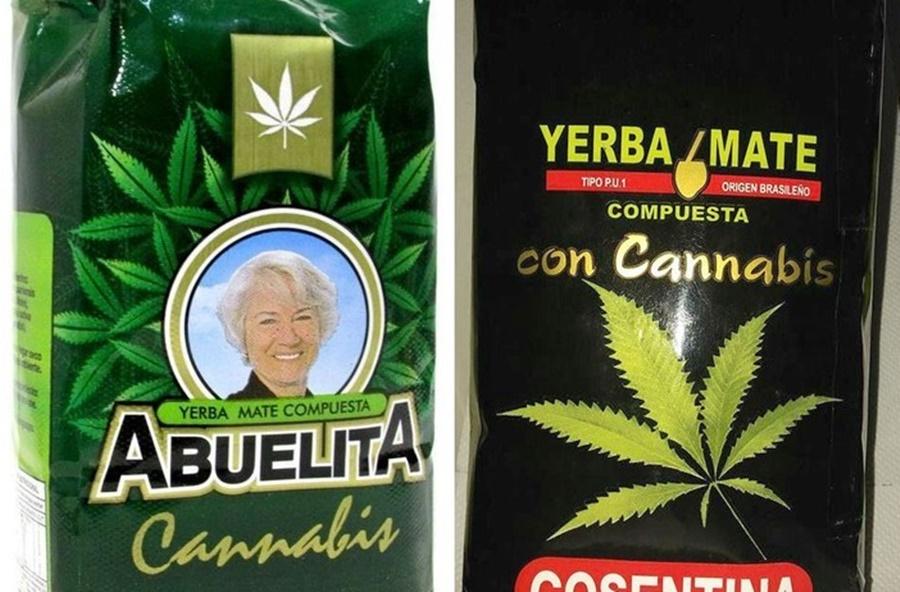 Desde el lunes, en Uruguay se venderá yerba mate con cannabis