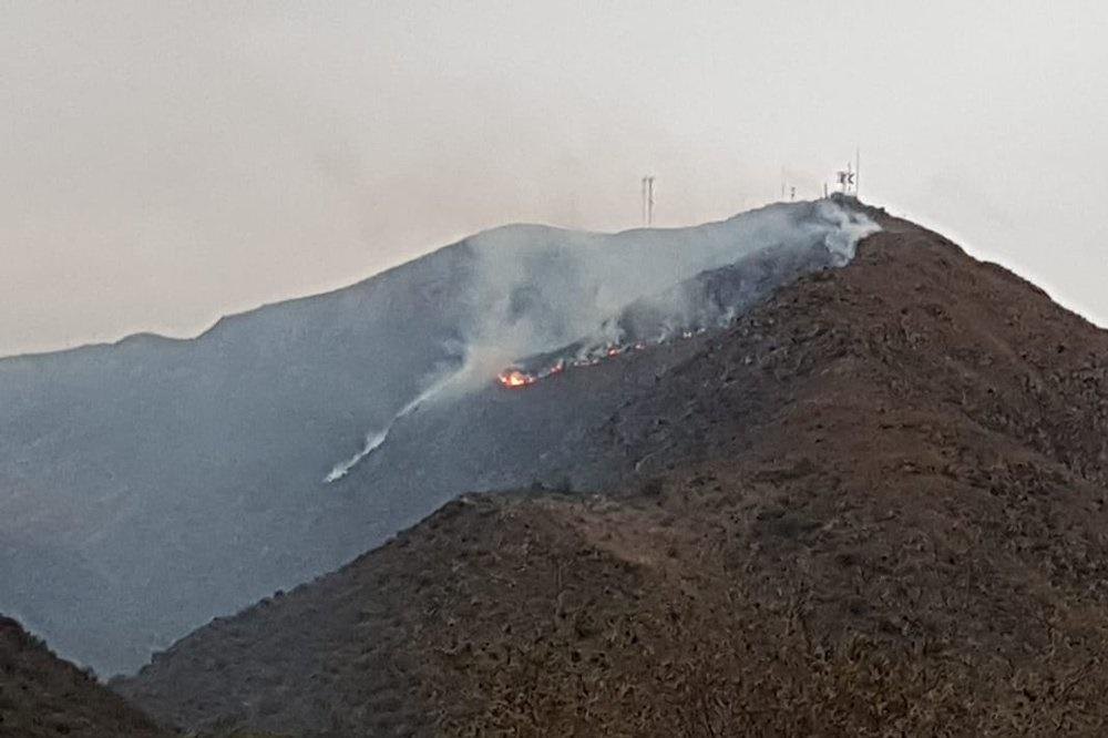 Fue controlado el incendio forestal en el cerro Las Antenas de Los Cocos