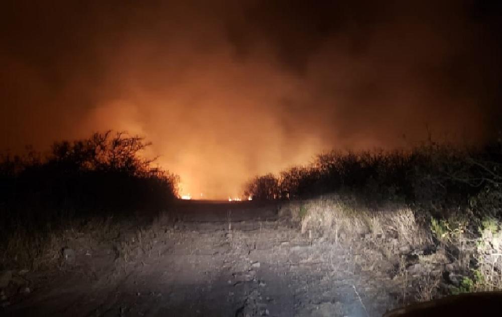 Decretan estado de emergencia para productores afectados por incendios