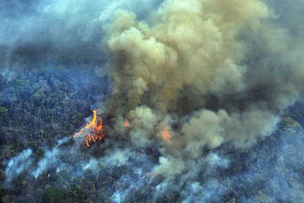 Incendios Amazonas - Telam