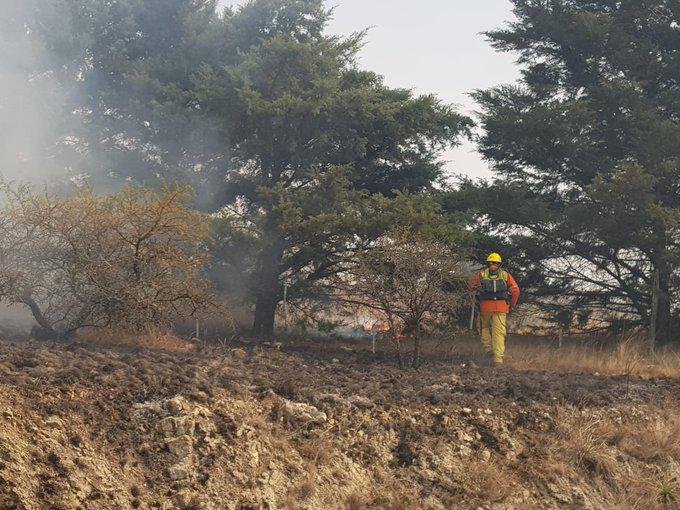 incendios 2 by gob de cba