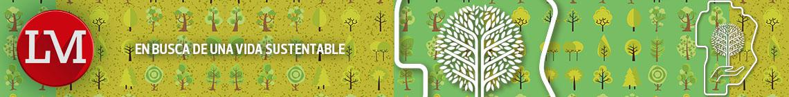 Suple 22 - Vida Sustentable XII - Bnr