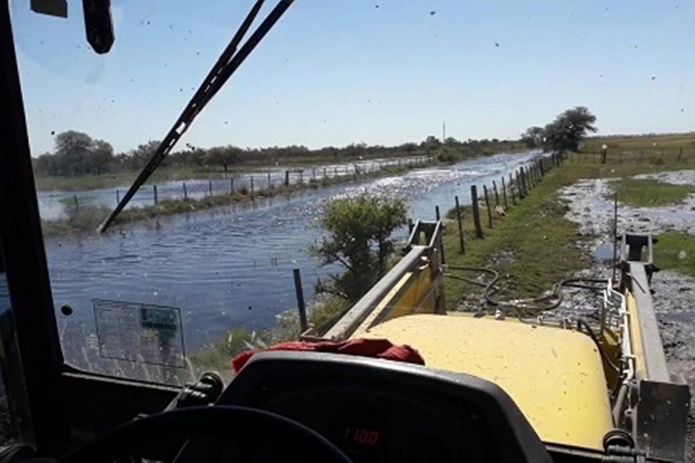 Productores inundados se concentrarán en Oliva para reclamar soluciones