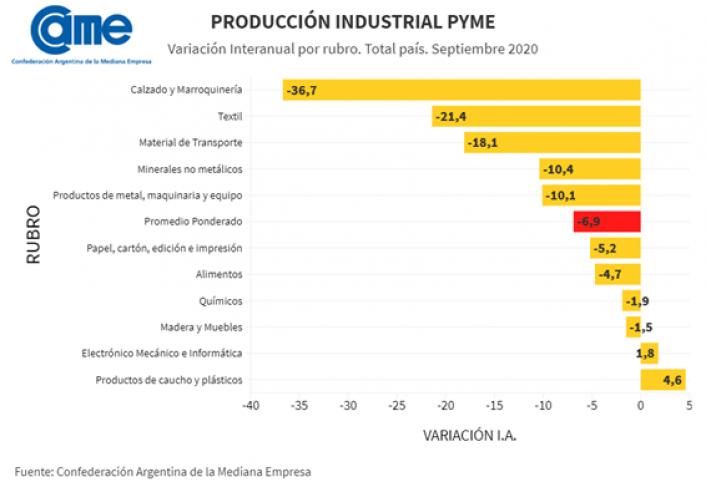 Produccion industrial CAME 1