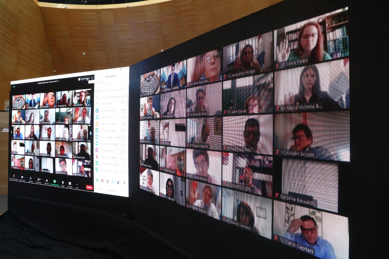 Sesion legislativa virtual