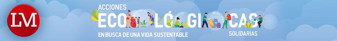 Suple 26 - Vida Sustentable XVI - Bnr