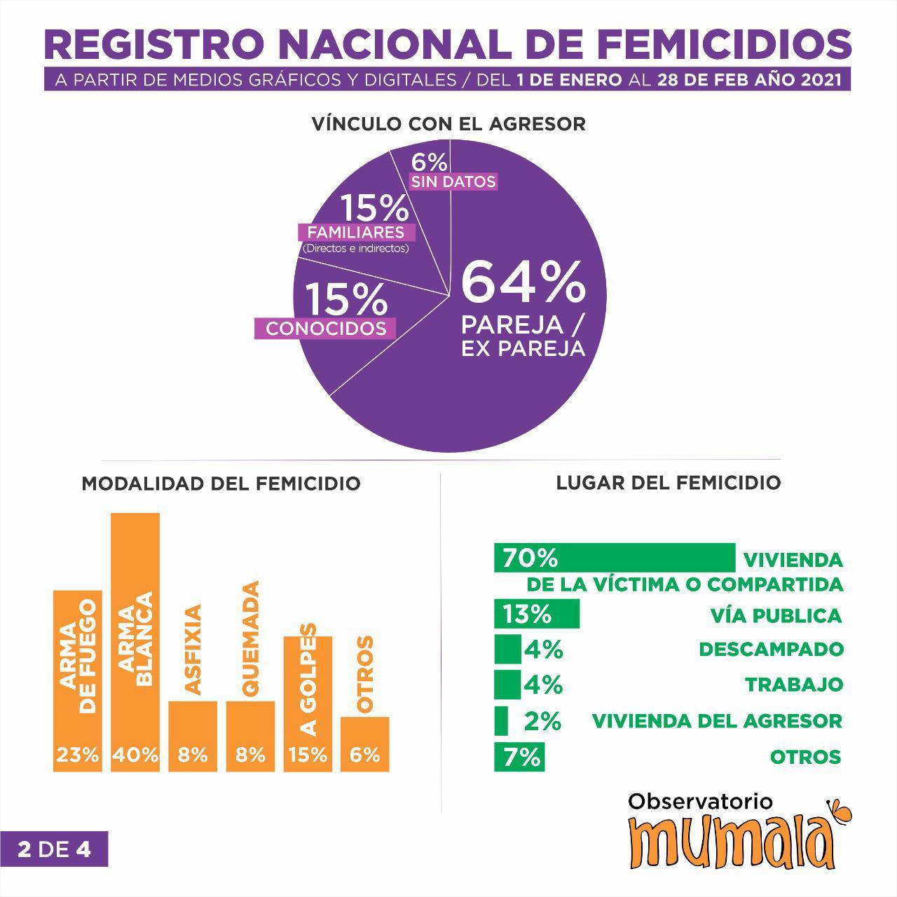 Registro Nacional de femicidios Mumala 28 02 2021