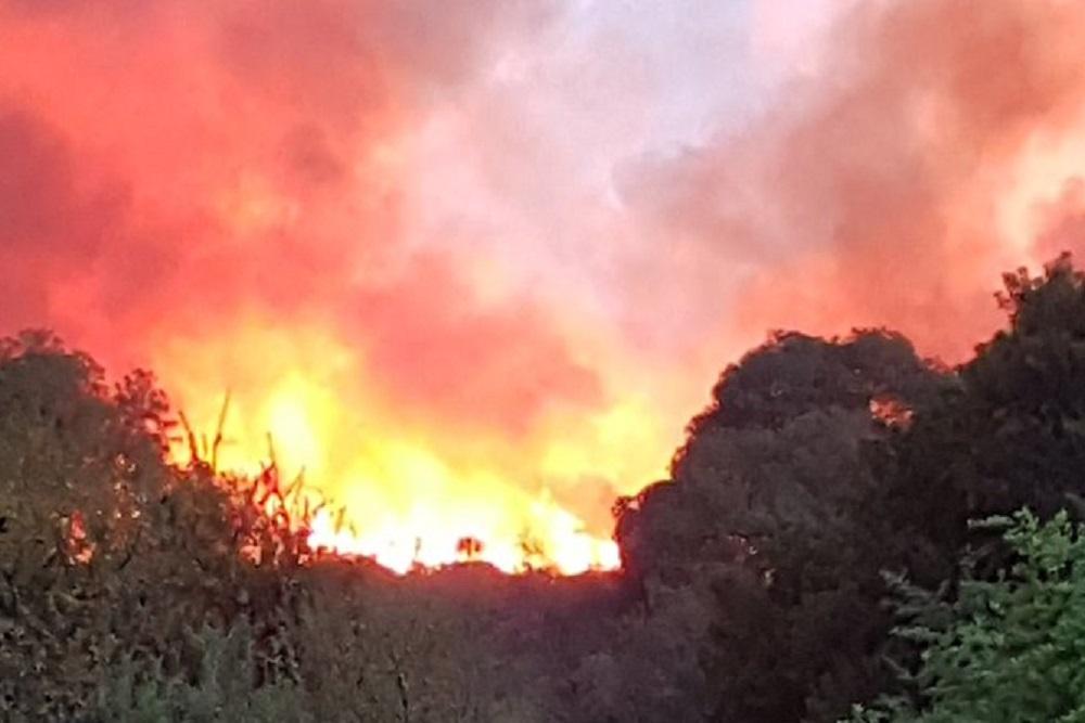 Detienen a un joven acusado de iniciar el incendio forestal en Traslasierra